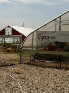 Hoophouse one in the foreground with our new accessible hoop house behind.