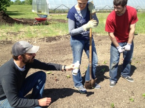 Dan and volunteers releasing beneficial insects on a sunny day at The Farm.