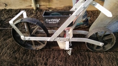 The Earthway seeder planting turnips