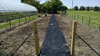 Adding the pathway.