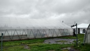 hoop in rain a