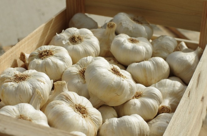 Food Garlic White Succulent Agriculture Garlic